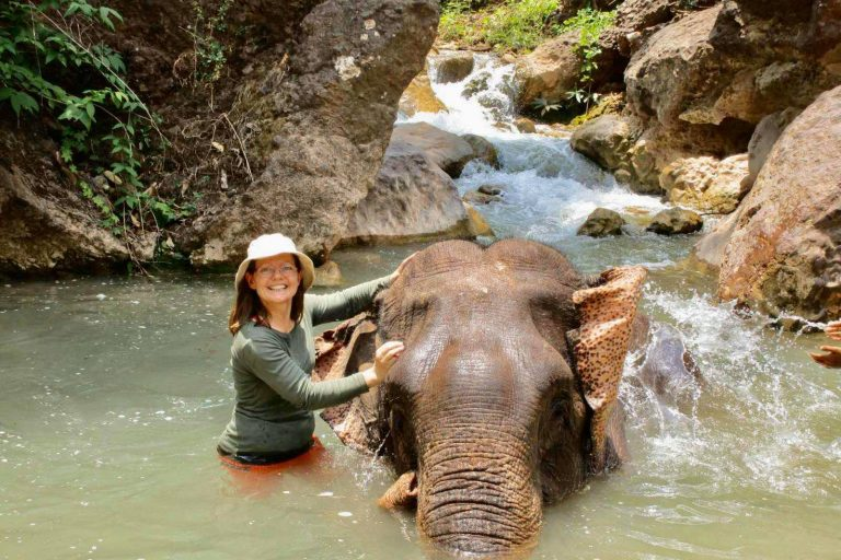 Meet the gentle giants: Myanmar Elephant Camps